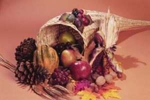 thanksgiving horn o copia