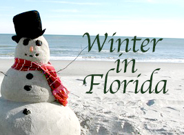 Florida Winter copy.jpg